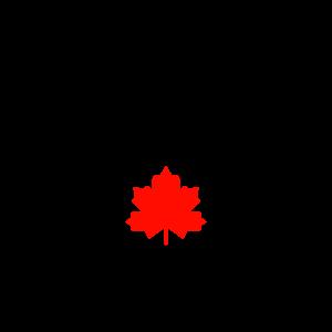 Canadian Financial regulations