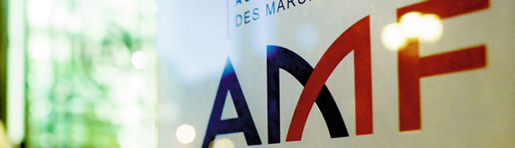 FRENCH STOCK MARKET REGULATORY - THE AMF