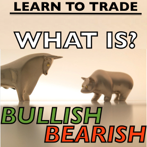 Terms - What do Bullish and Bearish mean?